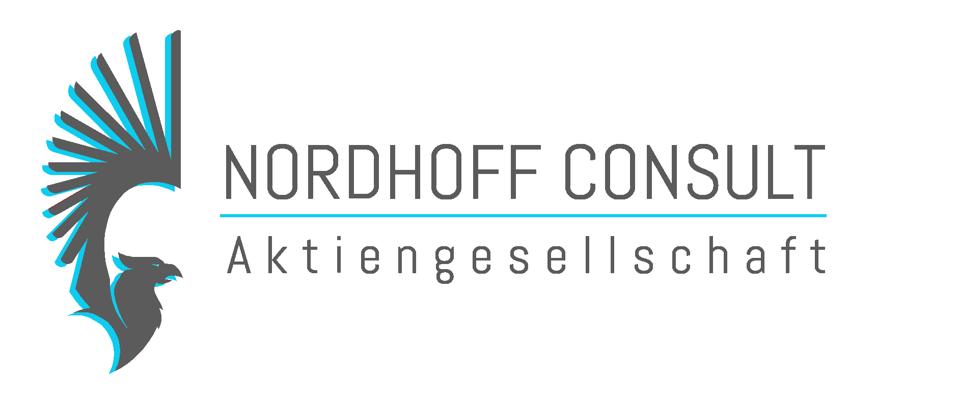 Nordhoffconsult AG Header Light Blute grey